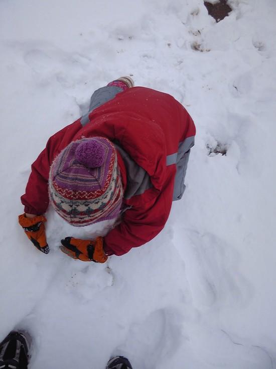 雪遊び!_f0214534_8312191.jpg