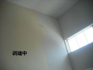 f0031037_19483739.jpg