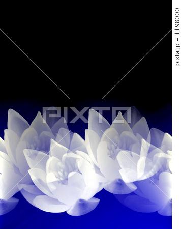 b0161652_17271336.jpg