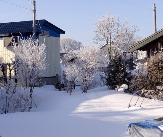 霧氷の朝 ・・・・・ 動画の追加あり^^_a0136293_16172484.jpg