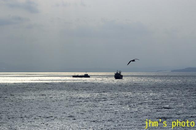 穏やかに、ただ穏やかに、函館海風景_a0158797_2332335.jpg