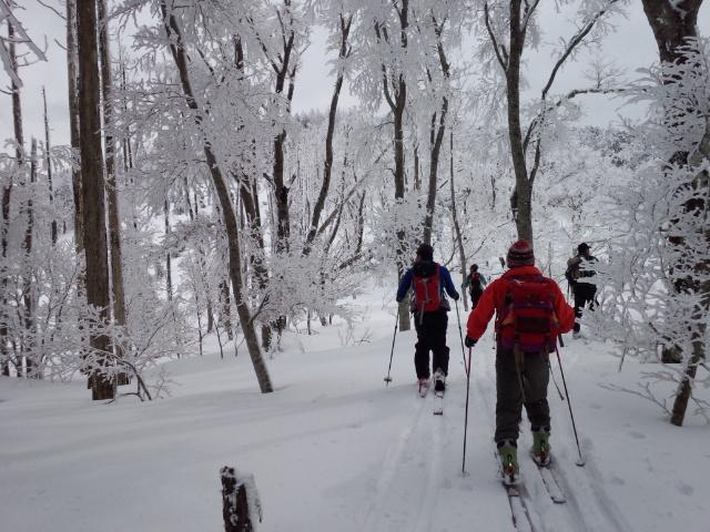 久々の山スキー!!_f0101226_847578.jpg