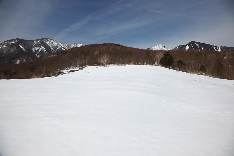 暖かな3月初日_b0179231_0471510.jpg