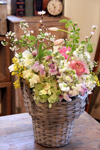春色ピンク_d0086634_11273940.jpg