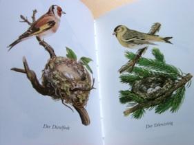 インゼル文庫:Das kleine Buch der Vögel und Nester_b0087556_18233999.jpg