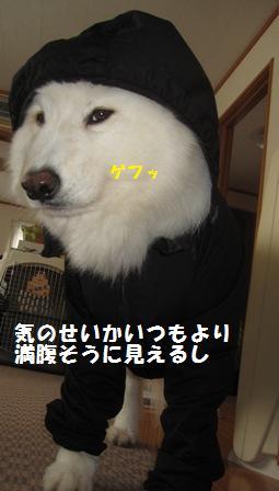 f0212597_10174438.jpg