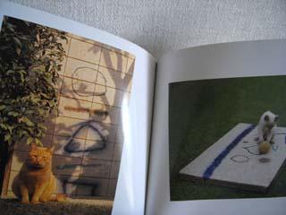 私の本だなから 2月 ~津高家の猫たち  阪神大震災に見舞われて~_c0138704_15124532.jpg
