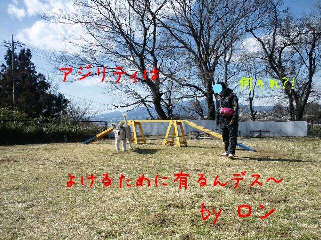 d0241911_22341100.jpg