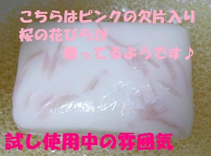 b0077721_1429426.jpg