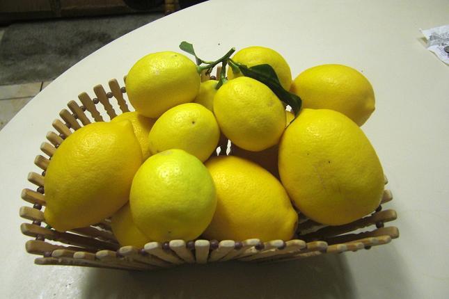 越境レモンのママレード。_c0119140_1330150.jpg
