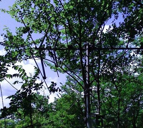 2010/05/13 神楽山 猿橋御前山_d0233770_22212225.jpg