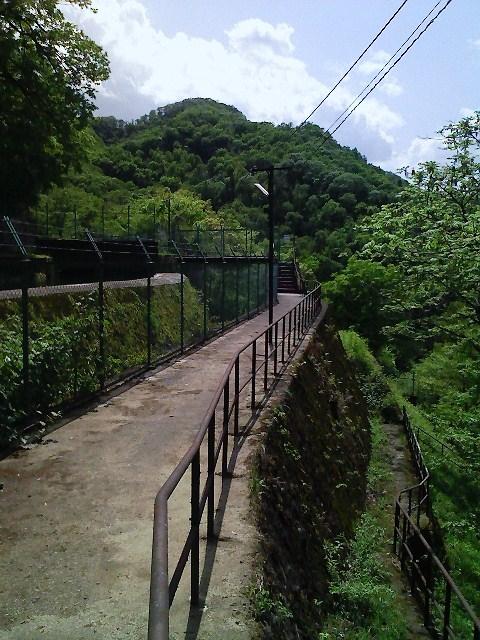 2010/05/13 神楽山 猿橋御前山_d0233770_22263153.jpg