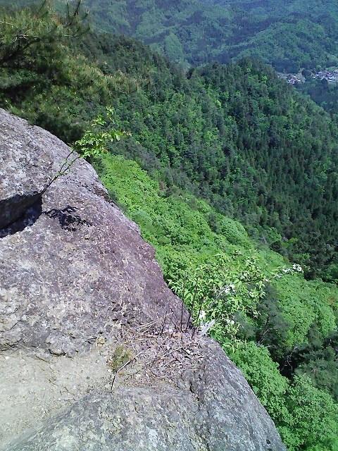 2010/05/13 神楽山 猿橋御前山_d0233770_2283517.jpg
