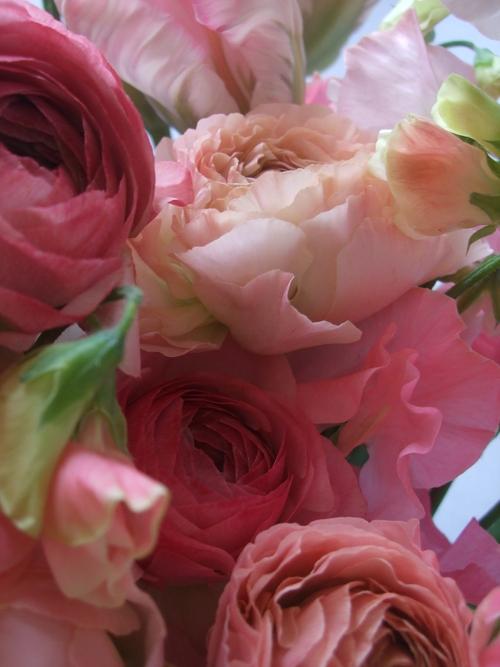 オークリーフ(ひな祭りの花束)_f0049672_12442316.jpg