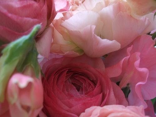 オークリーフ(ひな祭りの花束)_f0049672_12445355.jpg