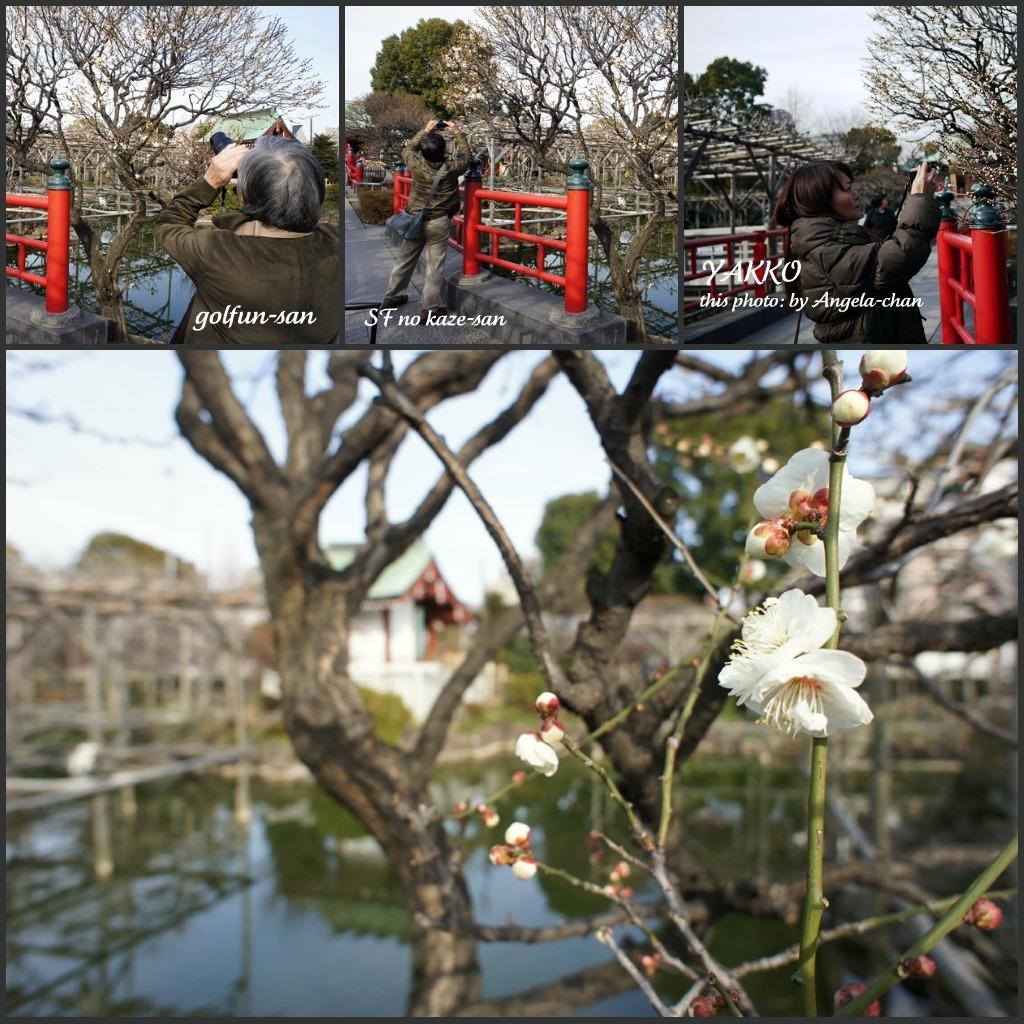 『いい色』ブロガーさんお江戸に来たるっ_b0190603_16553919.jpg