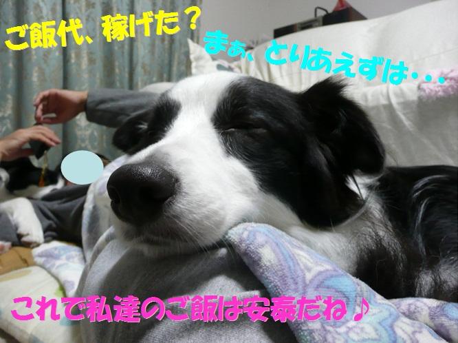 c0147241_1852418.jpg