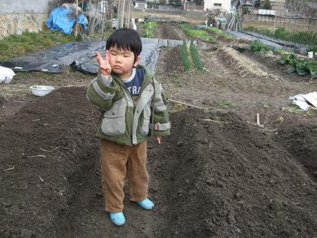我が家の畑5_d0191262_2303265.jpg