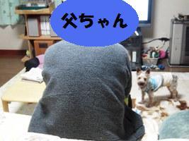 d0140668_1220547.jpg