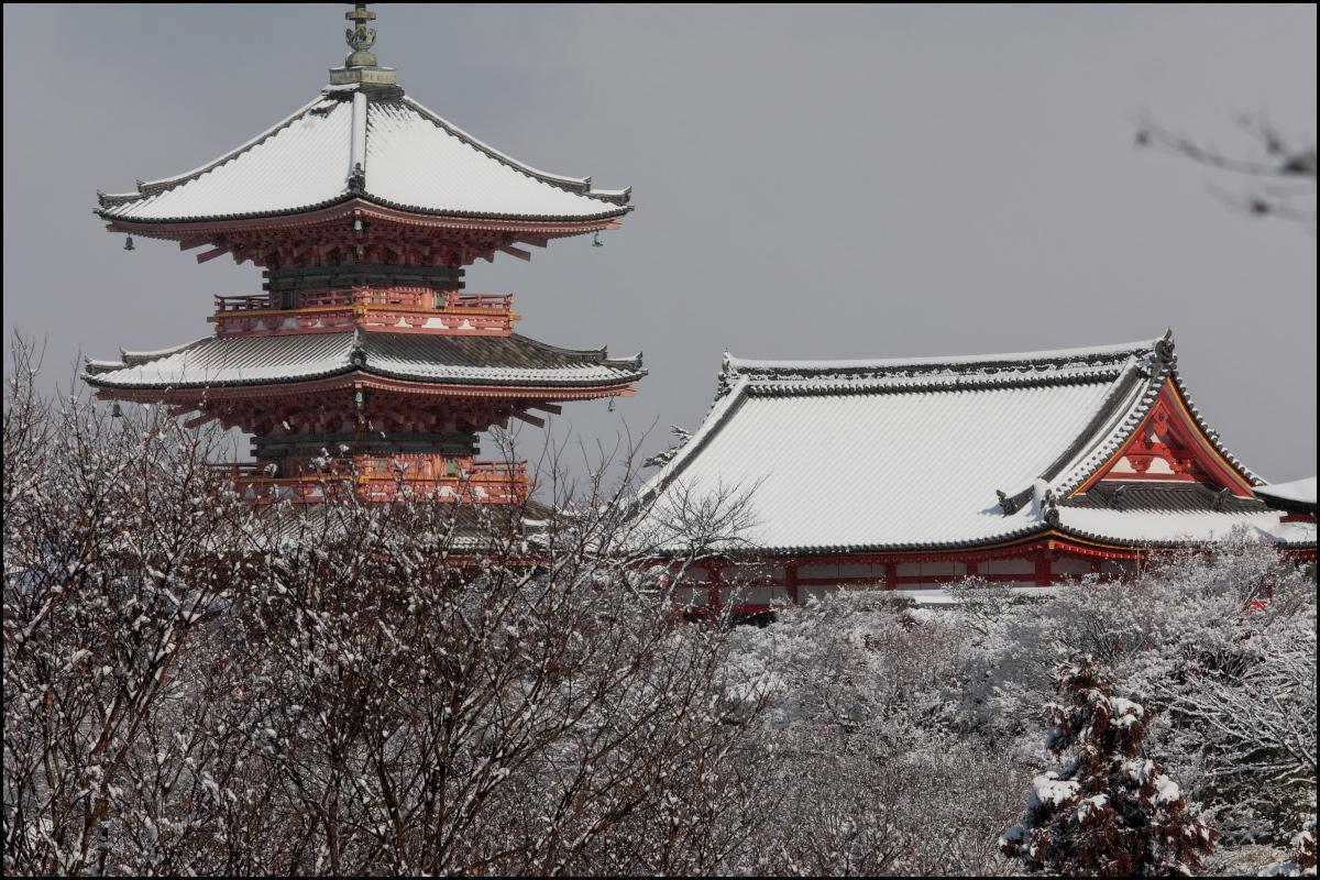 雪景色 <京都> 清水寺_f0021869_23314483.jpg