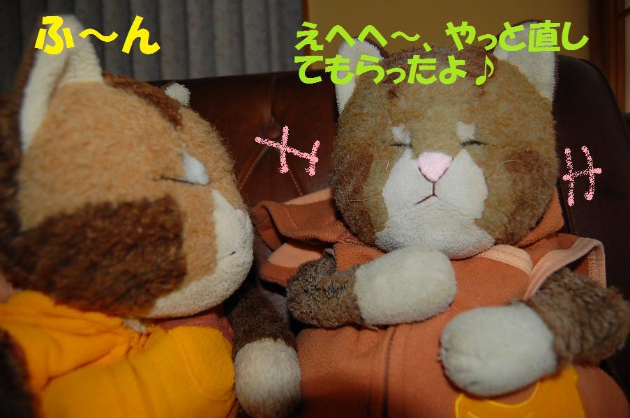 b0059978_22275279.jpg