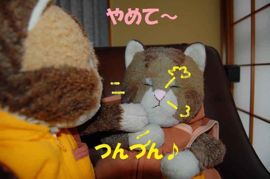 b0059978_222913100.jpg