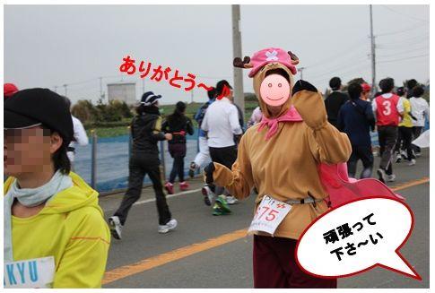 三浦国際市民マラソン_a0161111_1515113.jpg