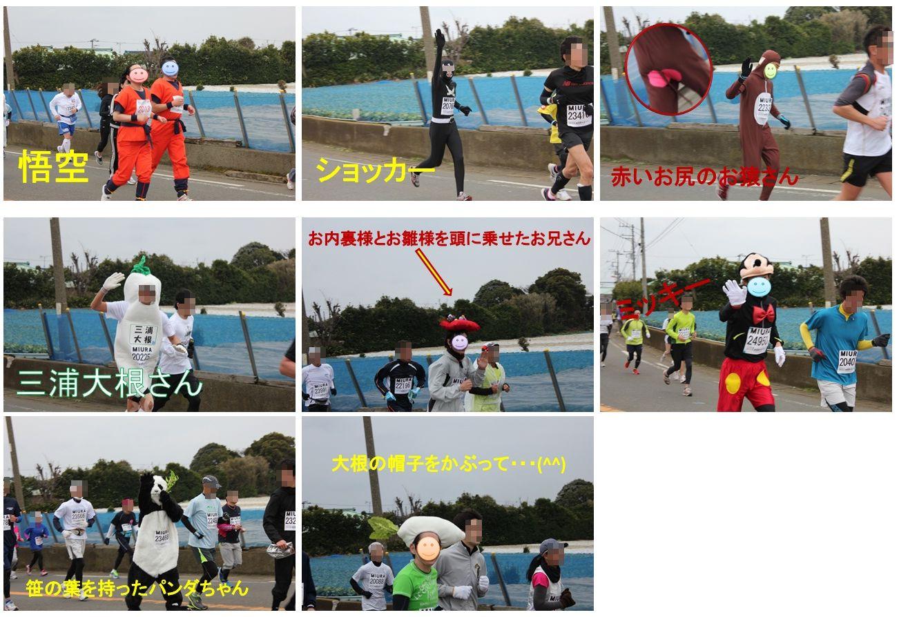 三浦国際市民マラソン_a0161111_15204465.jpg