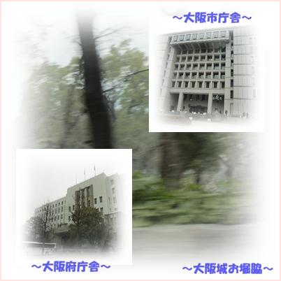 b0167519_9352672.jpg