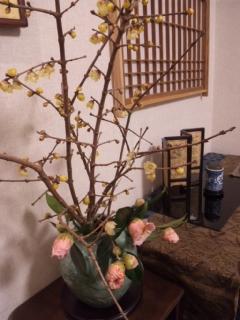 春近し_e0163046_0155823.jpg