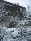 春遠し_b0246670_10552448.jpg