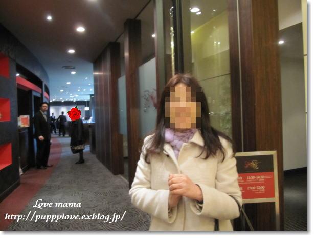b0136683_1644147.jpg