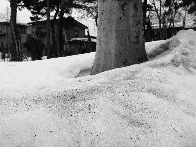 故郷の風景 残雪_f0024992_9445454.jpg