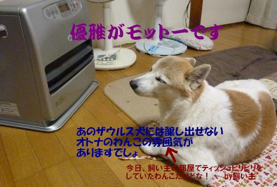 a0154801_20334129.jpg