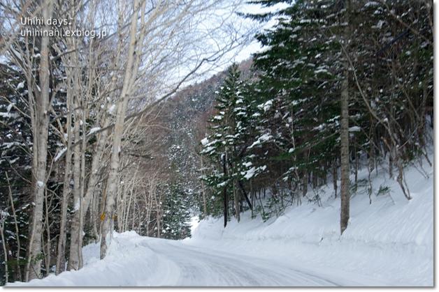 雪の中の cafee BuHo (カフェ ブーオ)_f0179404_21223082.jpg