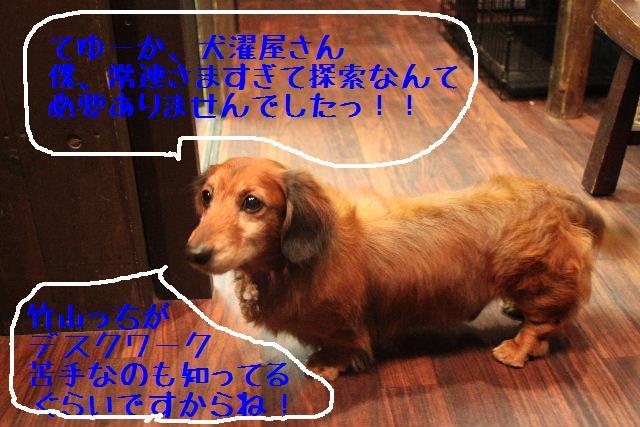 b0130018_18555096.jpg
