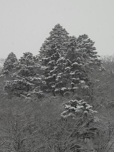 山奥 湯宿の楽しみ_d0150720_1012299.jpg
