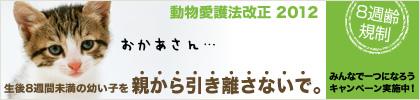 c0194042_17163018.jpg