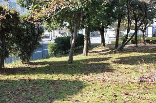 秋のうんぽ会レポート_b0073753_23372447.jpg
