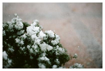 b0148858_1852381.jpg