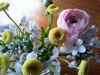 冬から春にいこうしていく日々_d0065558_23232546.jpg