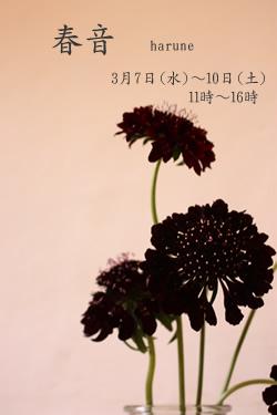 b0119063_1912297.jpg