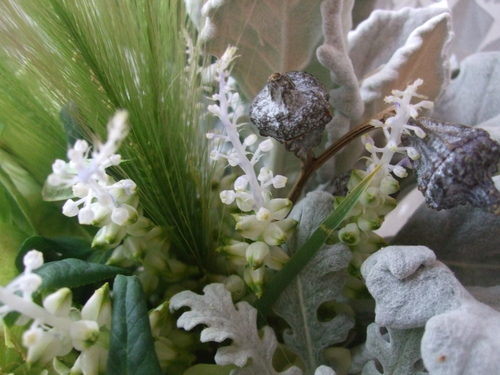 オークリーフ(クリスマスローズとラケナリアの花束)_f0049672_14444786.jpg