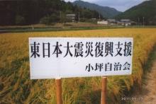 姫路市小坪地区生活会議【活動報告】_a0226881_15453374.jpg