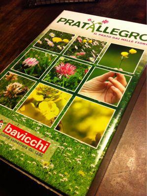 蜂のための庭作り_f0106597_3585666.jpg
