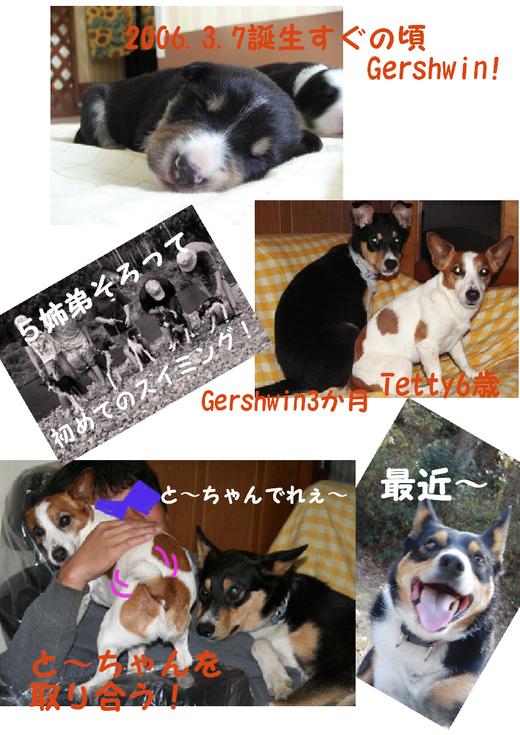 2012.3.7_c0203505_20351339.jpg