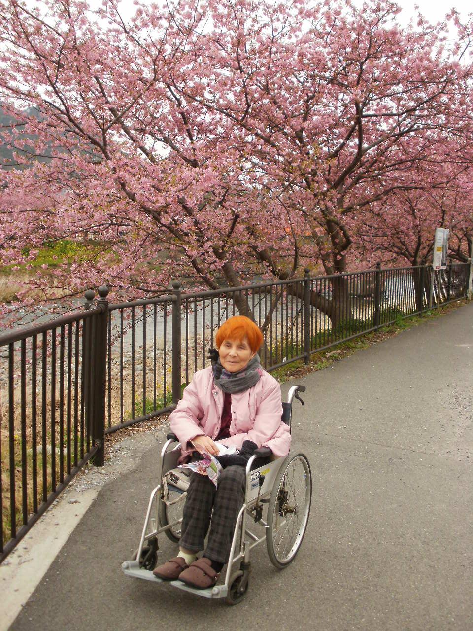 今日は母と一緒に河津桜を堪能しました♪_f0095325_2318594.jpg