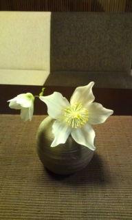 春はもうすぐ_f0233340_0524370.jpg