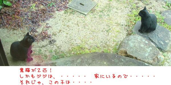 b0066947_12483577.jpg