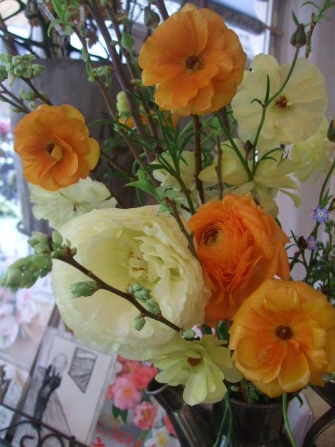 オークリーフ(春色)_f0049672_1763668.jpg